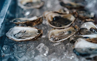 Oysters-long-tray-1.1