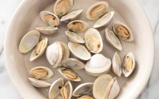 steamed-littleneck-clams-006