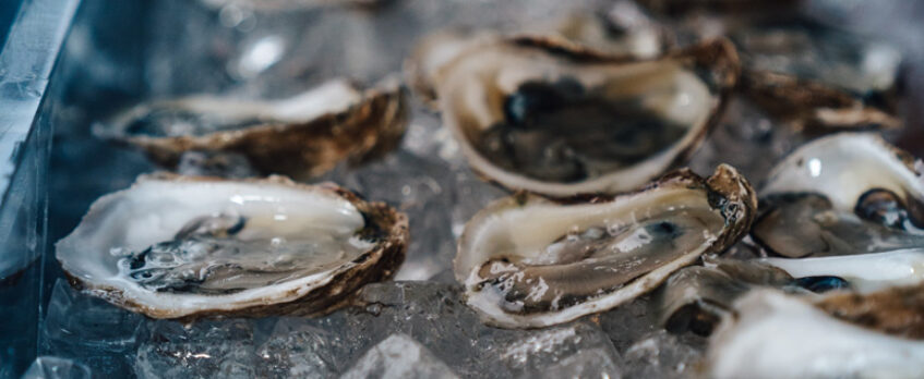 Oysters-long-tray-773x875