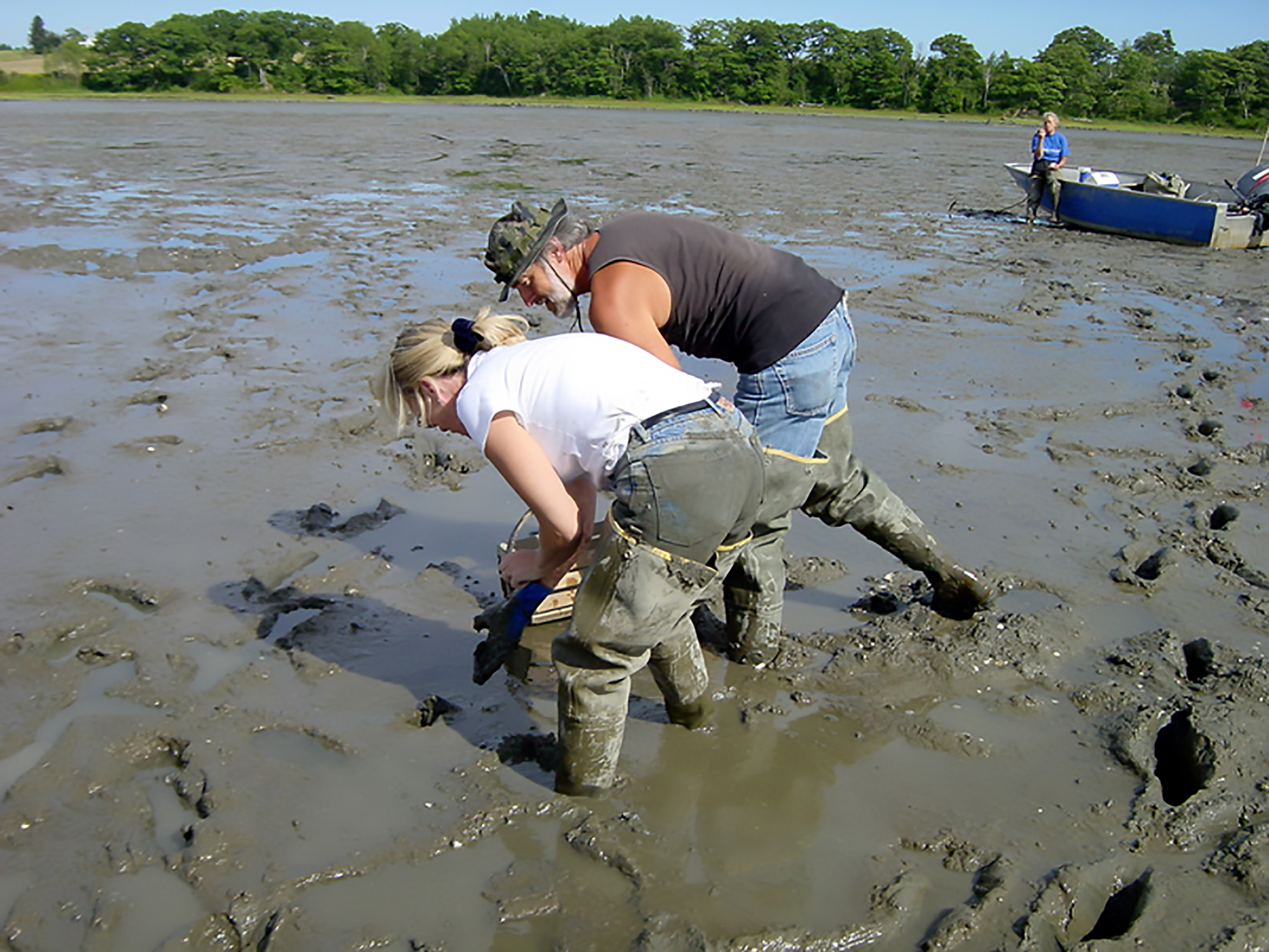 spinney creek clam digging enl